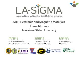 SD1: Electronic and Magnetic Materials Juana Moreno Louisiana State University