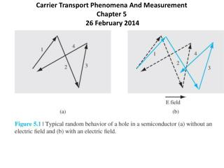 Carrier Transport Phenomena And Measurement Chapter 5  26 February 2014