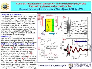 Coherent magnetization precession in ferromagnetic ( Ga,Mn )As  induced by  picosecond  acoustic pulses