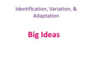 Identification, Variation, & Adaptation