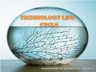 MANAGEMENT OF TECHNOLOGY – BPT 3113
