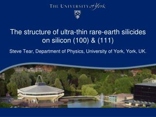 The structure of ultra-thin rare-earth  silicides  on silicon (100) & (111)