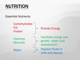Essential Nutrients Carbohydrates Fat Protein	 Vitamins Minerals Water