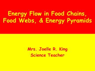 Energy Flow in Food Chains, Food Webs, & Energy Pyramids