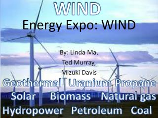 Energy Expo: WIND