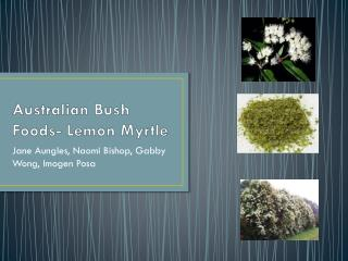 Australian Bush Foods- Lemon Myrtle