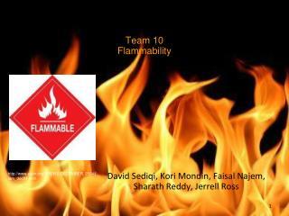 Team 10 Flammability