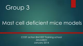 Group 3   Mast cell deficient mice models