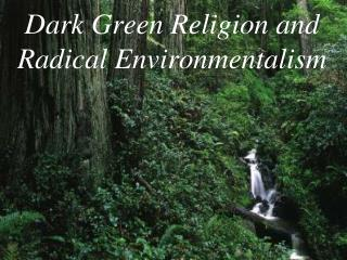 Dark Green Religion and Radical Environmentalism