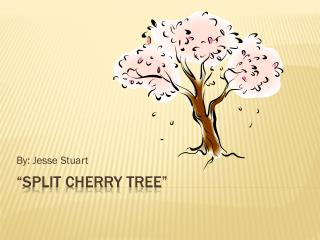 """Split Cherry Tree"""