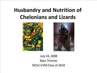 husbandry and nutrition of chelonians and lizards