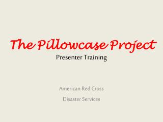 The Pillowcase Project Presenter Training