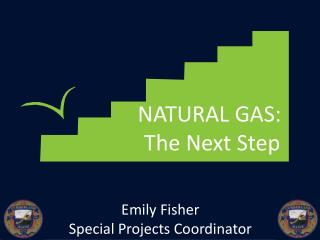 NATURAL GAS:   The Next Step