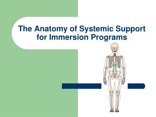 The Anatomy of Systemic Support for Immersion Programs