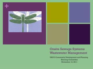 Onsite Sewage Systems Wastewater Management