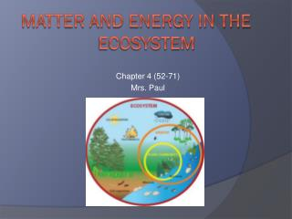 Matter and Energy in the 		    Ecosystem
