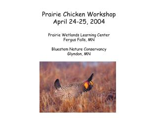 Prairie Chicken Workshop April 24-25, 2004 Prairie Wetlands Learning Center Fergus Falls, MN Bluestem Nature Conservancy