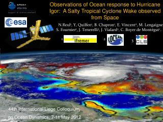 Observations of Ocean  response  to  Hurricane Igor :   A  Salty Tropical Cyclone Wake  observed  from Space