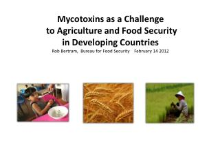 Mycotoxins  as a  Challenge to Agriculture and  Food Security in Developing Countries Rob Bertram,  Bureau for Food Secu