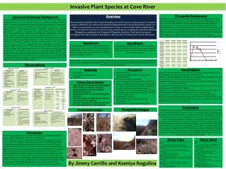 Invasive Plant Species at Cove River