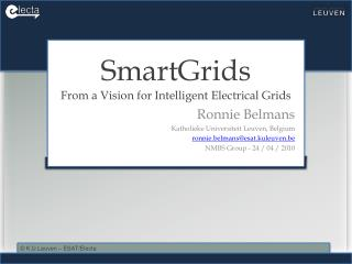 SmartGrids From a Vision for Intelligent Electrical Grids