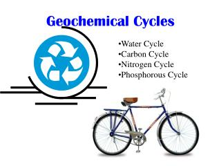 Geochemical Cycles
