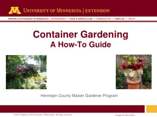 Container Gardening A How-To Guide