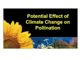 Potential Effect of Climate Change on Pollination