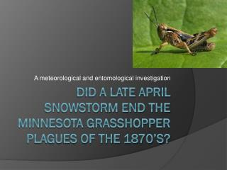 Did a late  april  snowstorm end the  minnesota  grasshopper plagues of the 1870's?