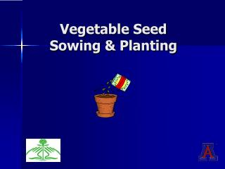 Vegetable Seed  Sowing & Planting