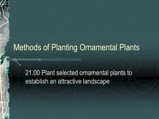 Methods of Planting Ornamental Plants