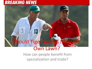 Should Tiger Woods Mow His Own Lawn?