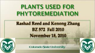 PLANTS USED FOR PHYTOREMEDIATION
