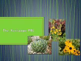 The  Xeriscape  PBL