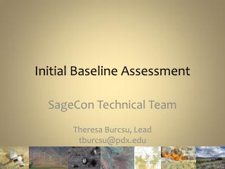 Initial Baseline Assessment