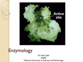 Enzymology
