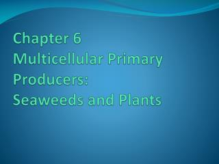Chapter 6   Multicellular Primary Producers:   Seaweeds and Plants