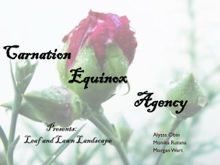 Carnation  			Equinox  						Agency 	Presents: 	Leaf  and Lawn Landscape