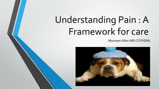Understanding Pain : A Framework for care
