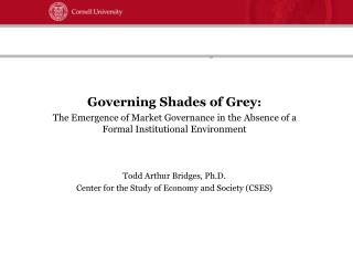 Governing Shades of Grey :  The Emergence of Market Governance in the Absence of a Formal Institutional Environment Todd