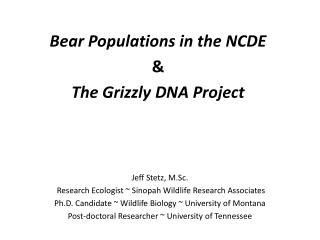 Jeff Stetz, M.Sc.   Research Ecologist  ~ Sinopah  Wildlife Research  Associates Ph.D.  Candidate ~ Wildlife Biology ~