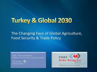 Turkey & Global 2030