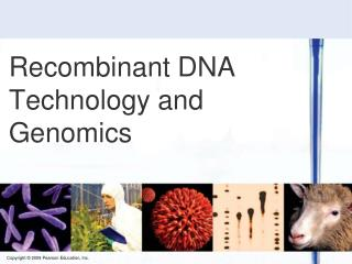 Recombinant DNA Technology and Genomics