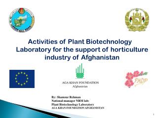 Activities of Plant Biotechnology Laboratory for the support of horticulture industry of Afghanistan
