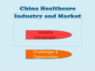 China Healthcare Industry and Market
