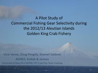 A Pilot Study of  Commercial  Fishing Gear  Selectivity  during the  2012/13  Aleutian Islands  Golden  King Crab Fisher