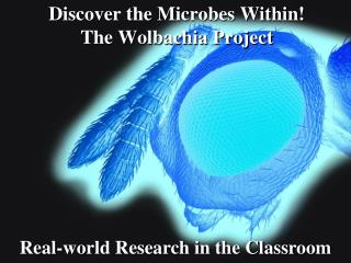 Discover the Microbes Within!  The Wolbachia Project