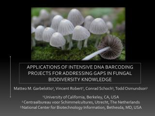 APPLICATIONS OF INTENSIVE DNA BARCODING PROJECTS FOR ADDRESSING GAPS IN FUNGAL BIODIVERSITY KNOWLEDGE