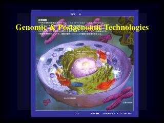 Genomic &  Postgenomic  Technologies