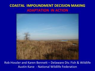 COASTAL  IMPOUNDMENT DECISION MAKING  ADAPTATION  IN ACTION